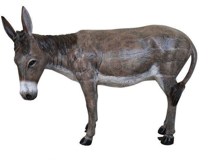 Turned head donkey