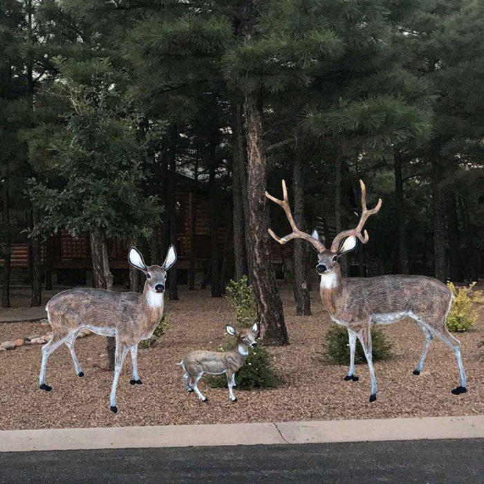 Family of deer
